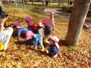 きれいな紅葉の中で落ち葉で遊びました